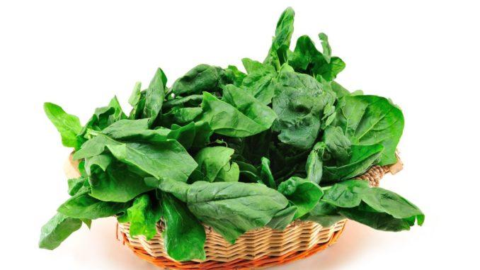 Spinat hilft beim Abnehmen