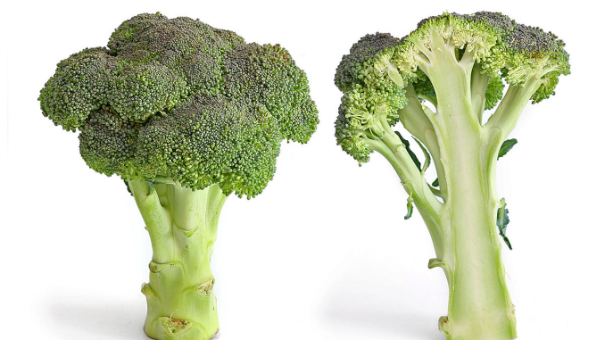 Wie gesund ist Brokkoli?